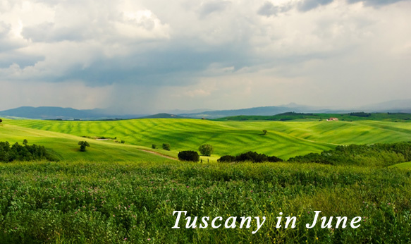 events tuscany june